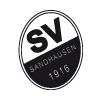 SVSandhausen
