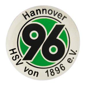 4250-01_h96-logo