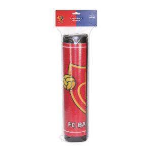 8530-VP_FCBasel